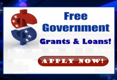 Federal Government Grants in Nigeria